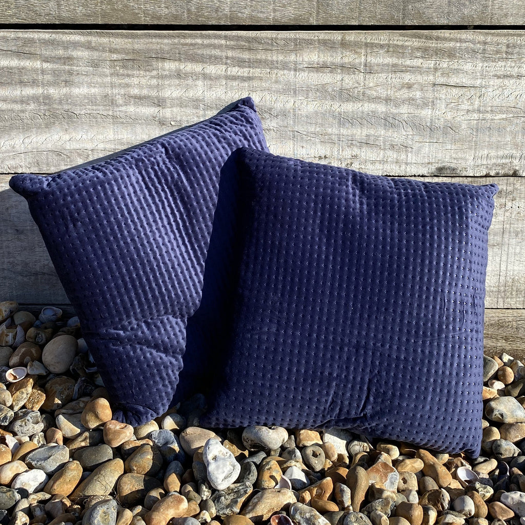 Pair of Embossed Blue Velvet Cushions