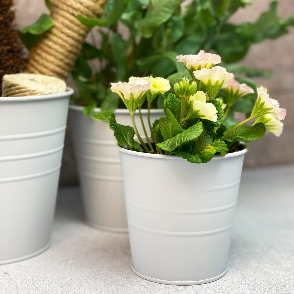 Chalk White Metal Planters