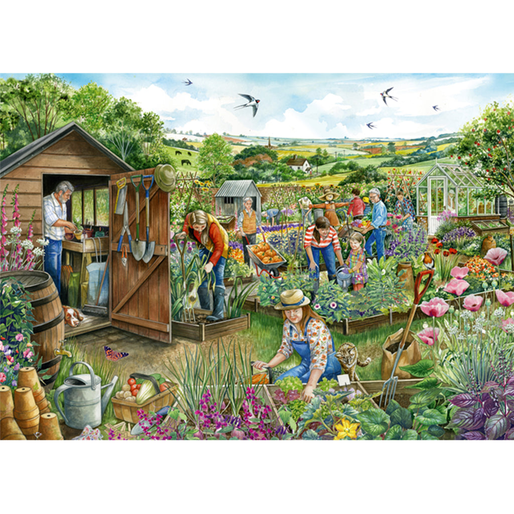 Down At The Allotment