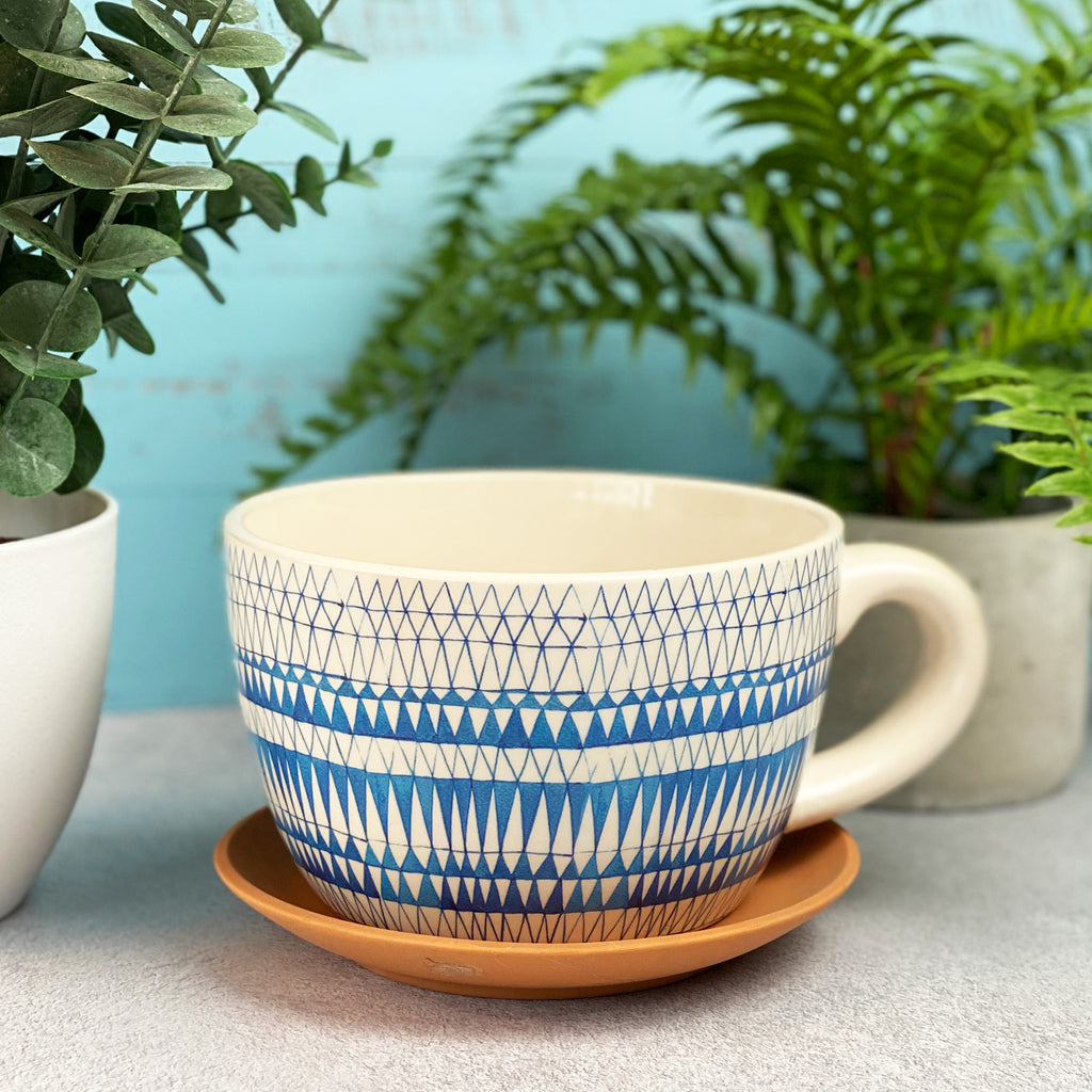 El Cotillo Cup And Saucer Planter