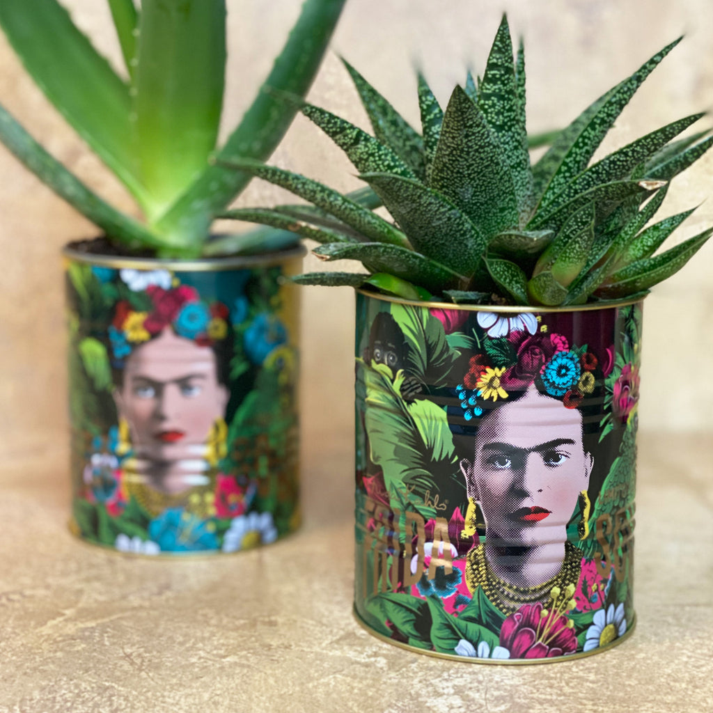 Frida Kahlo Medium Green Storage Tin