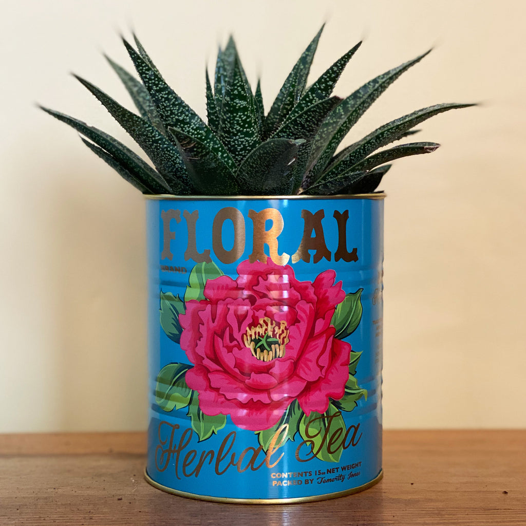Set of Mexican Tea Storage Tins