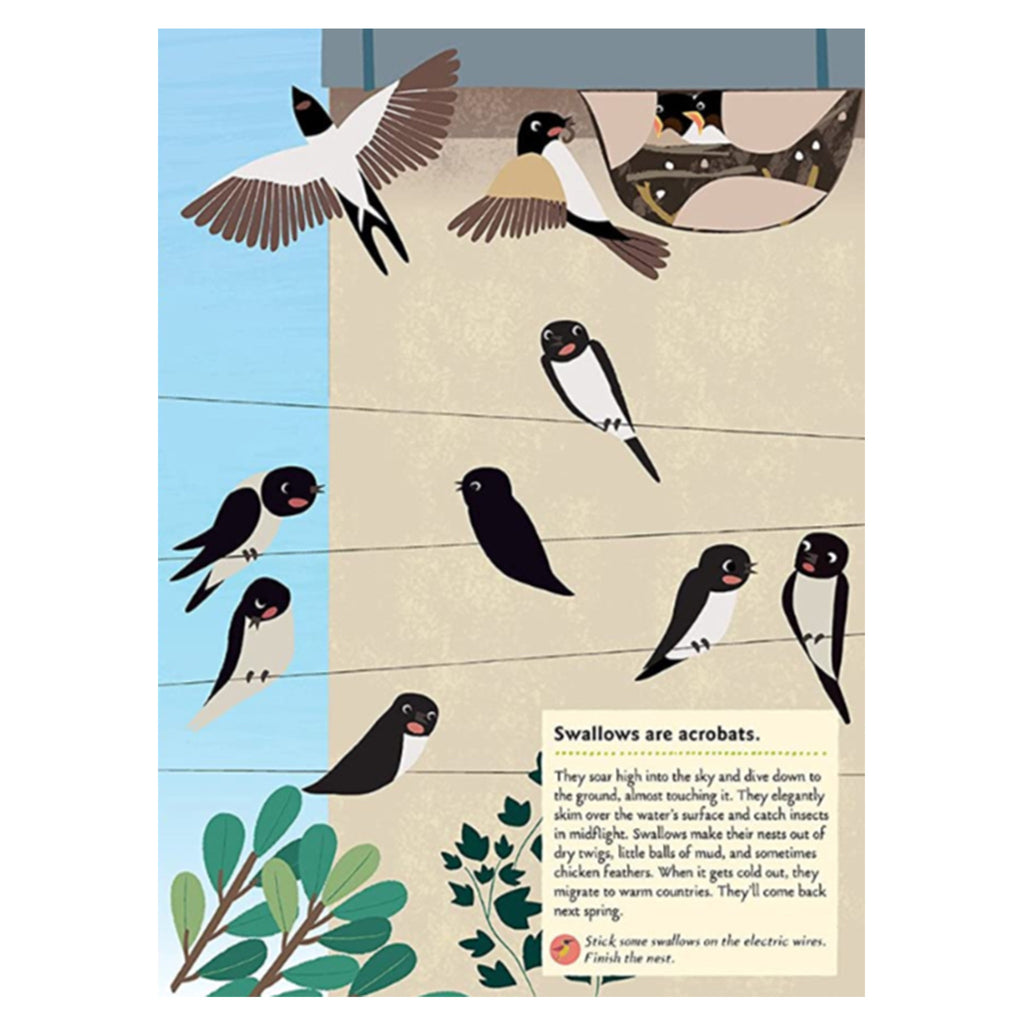 My Nature Sticker Activity Book: Birds Of The World