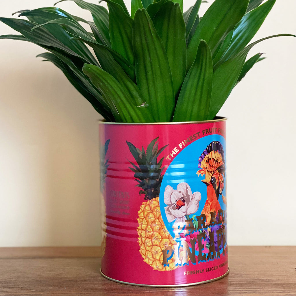 Set of Mexican Fruit Storage Tins