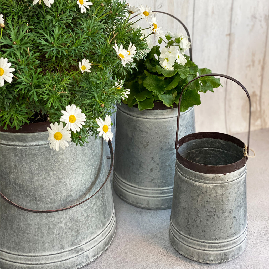 Set of Zinc Bucket Planters