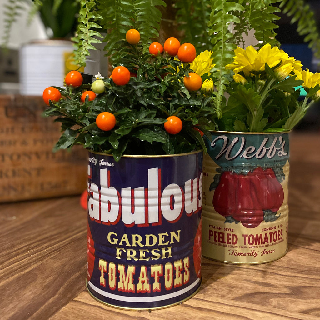 Set of Tomato Tins