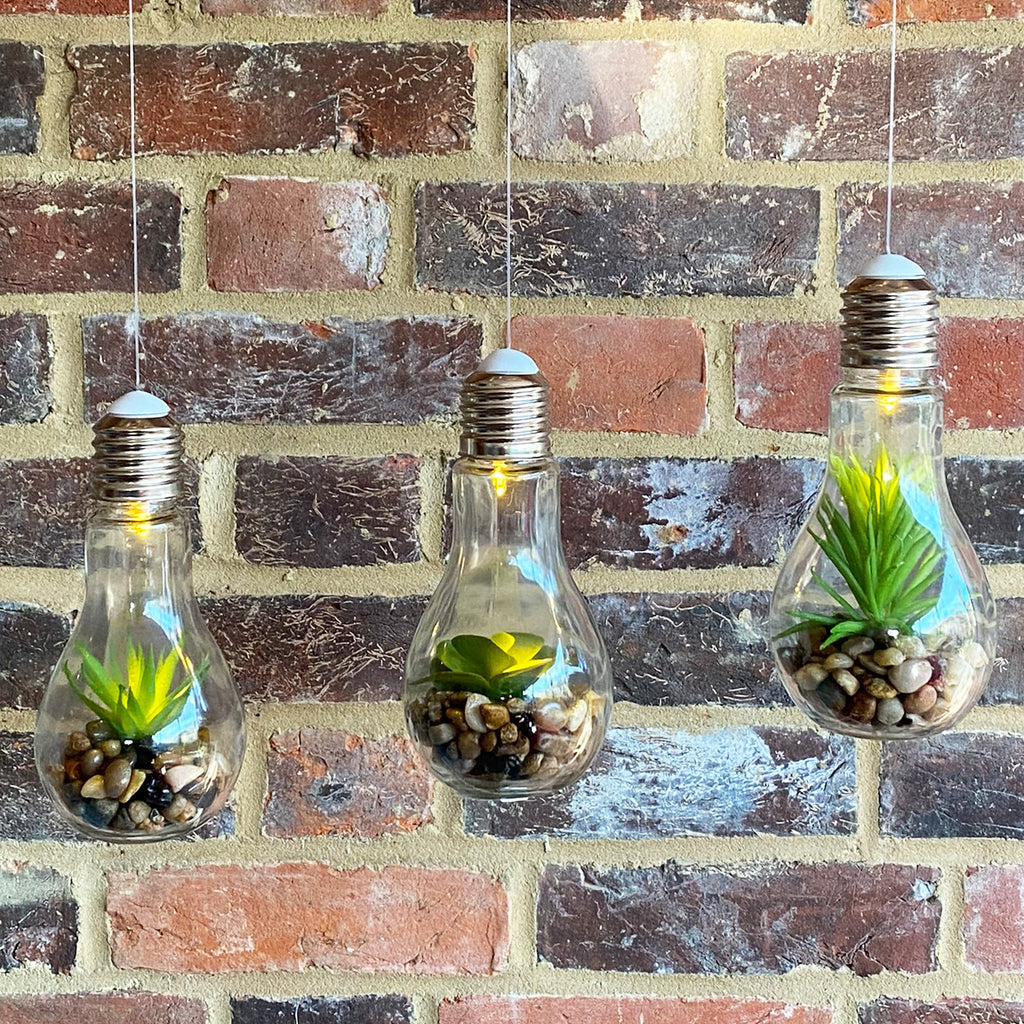Hanging Succulent Light Bulb