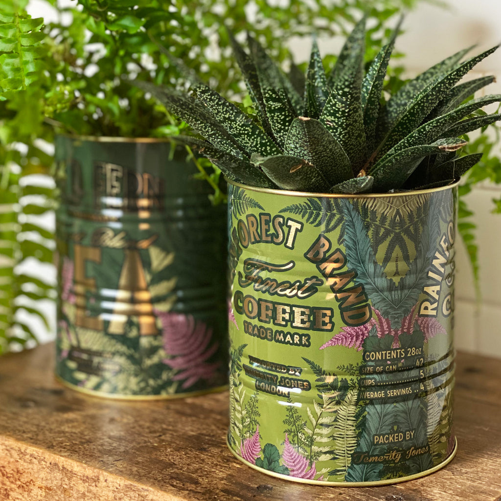Set of Fern Storage Tins