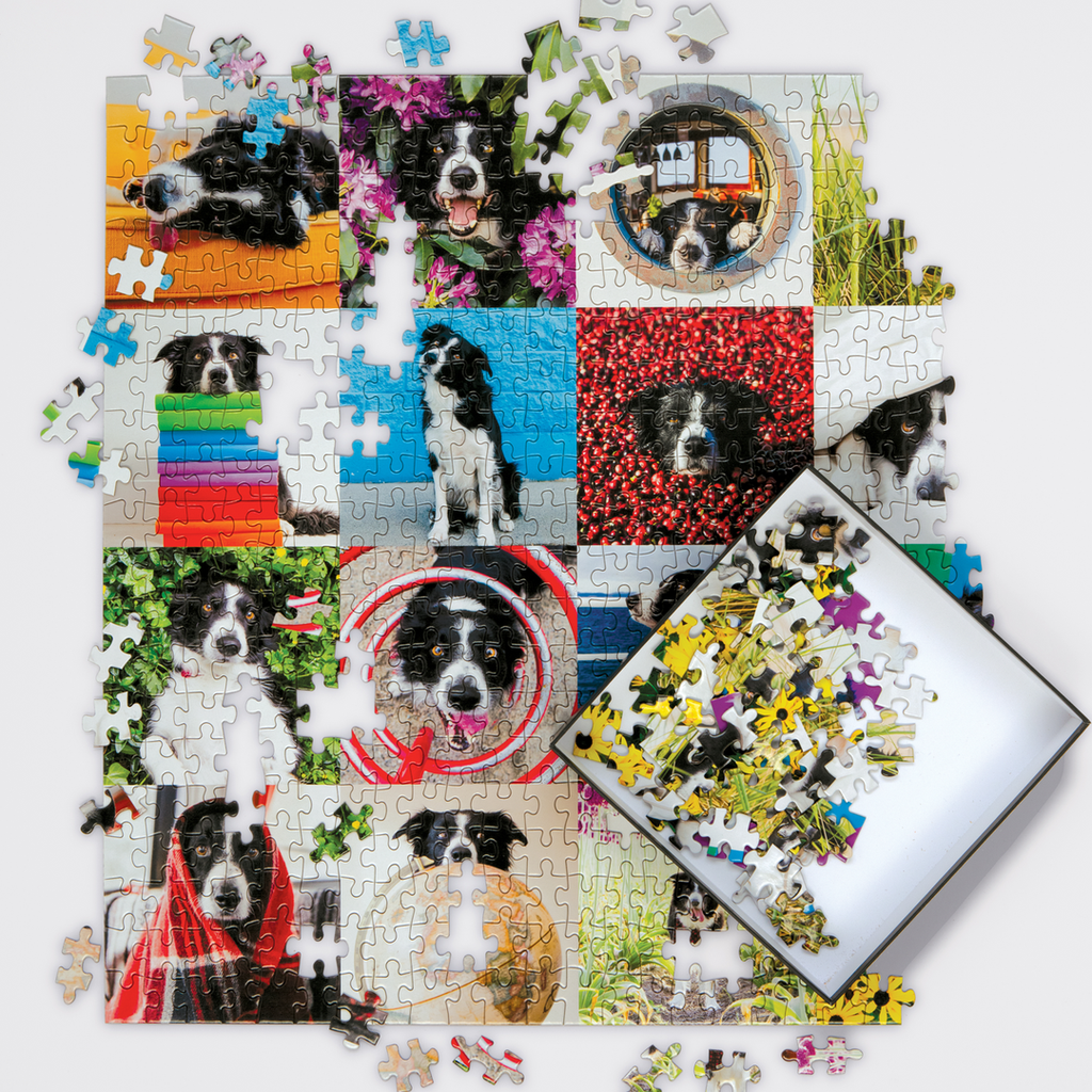 Momo The Dog - 500 Piece Puzzle