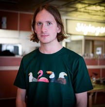 Load image into Gallery viewer, T-shirt Birds Green
