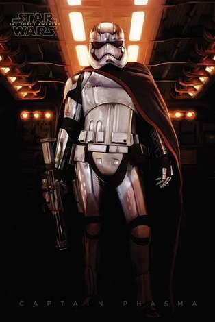 Star Wars Episode VII - Captain Phasma Door Poster