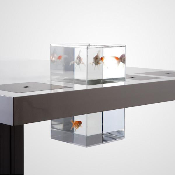 Milk Desk Aquarium - Aquarium - Outlet