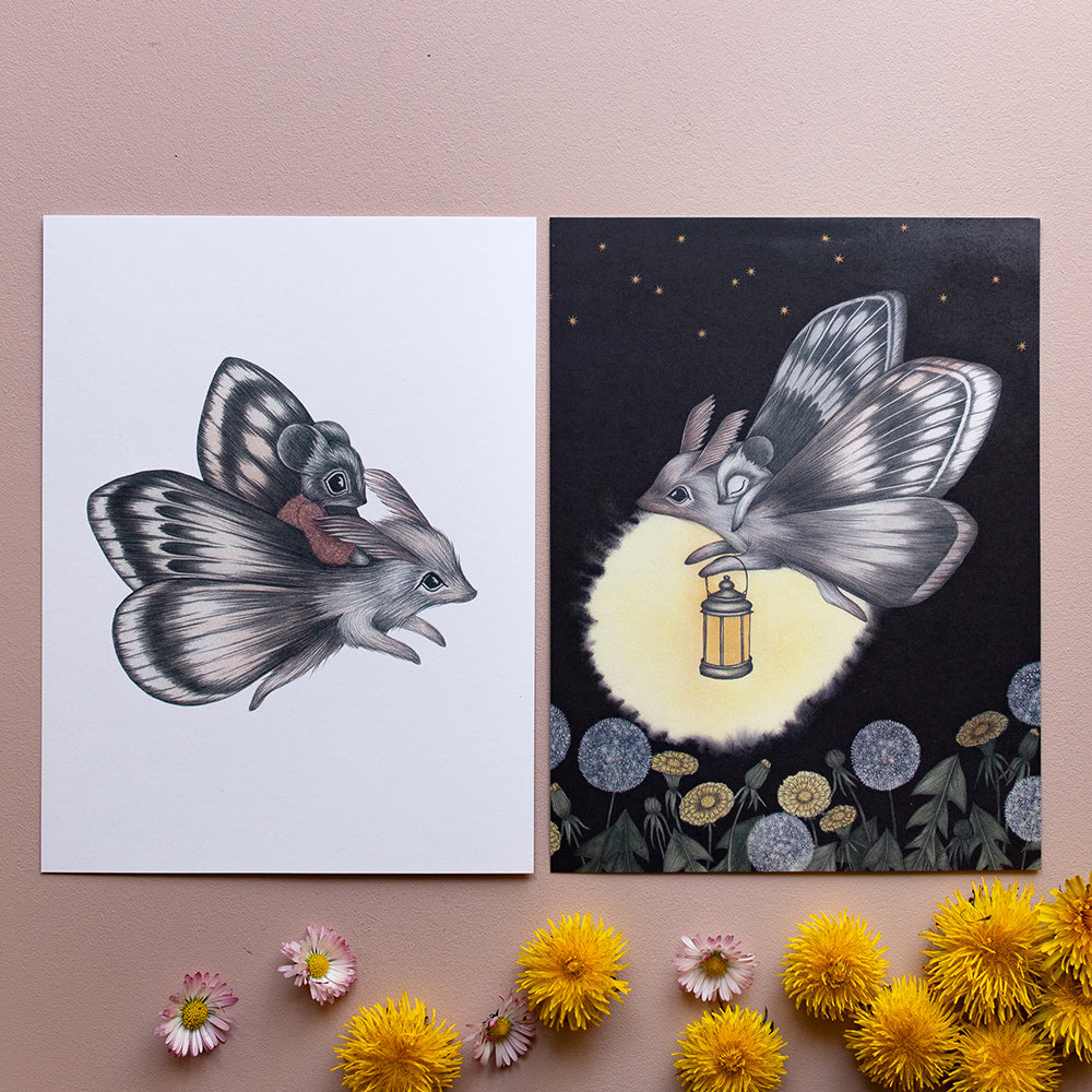 MOTH ADVENTURES, set of 2