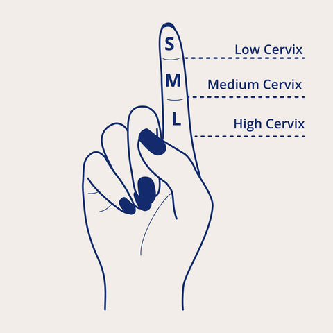 Diagram of how to measure your cervix