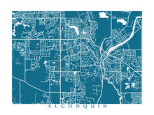 Load image into Gallery viewer, Map of Algonquin, Illinois by CartoCreative