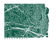 Load image into Gallery viewer, Map of Alexandria, Virginia by CartoCreative
