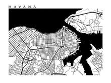 Load image into Gallery viewer, Havana B&W