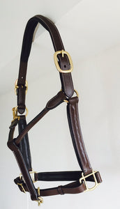 Brown halter for horses, training and turnout. Horse tack for equestrians.