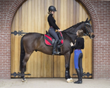 QHP Lisa full-seat horseback riding pants for the stylish and comfortable horseback rider.