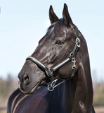 The Horze Cheyenne halter for horseback riders and equestrians. This is a stylish and fashionable horseback riding halter for all equestrians.