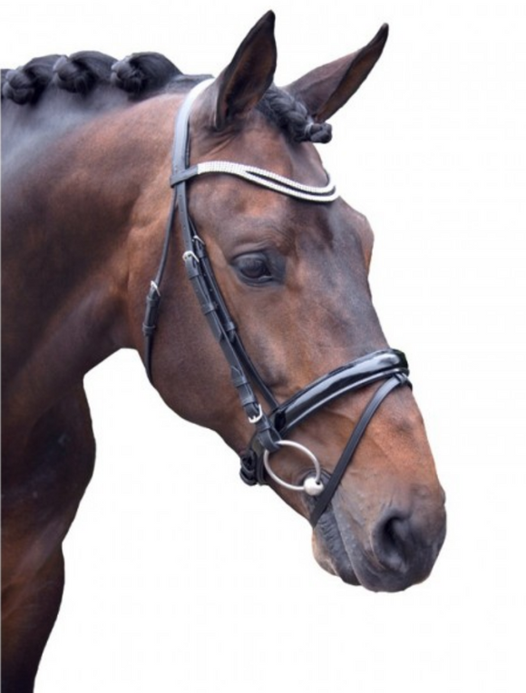 QHP Artemis dressage horseback riding bridle for the fashionable equestrian.