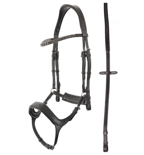 ANKY technical solutions anatomic bridle for dressage horses and dressage riding. Show bridle for dressage.