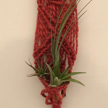Load image into Gallery viewer, Macrame plant holder red