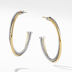 Hoop Earrings with 18K Gold