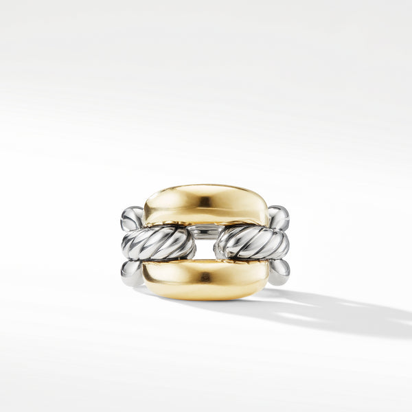 Wellesley Link Large Chain Link Ring with 18K Gold