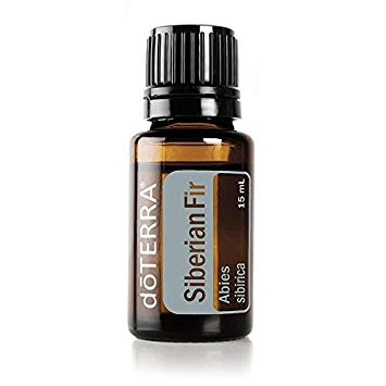 Siberian Fir Essential Oil 15ml Abies sibirica
