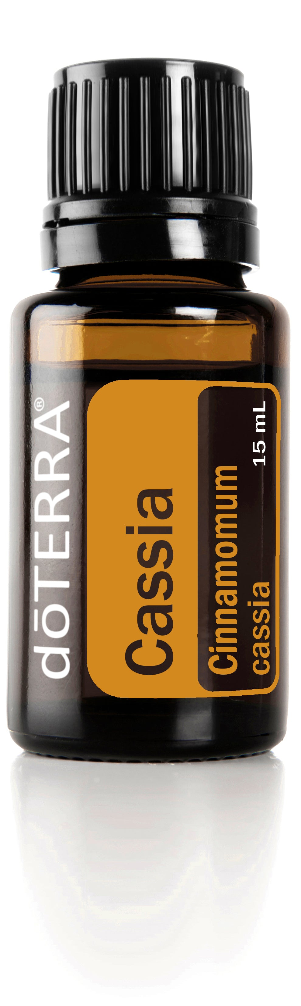 Cassia Essential Oil 15ml Cinnamomum cassia