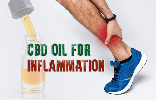 CBD and inflammation – The science behind the oil