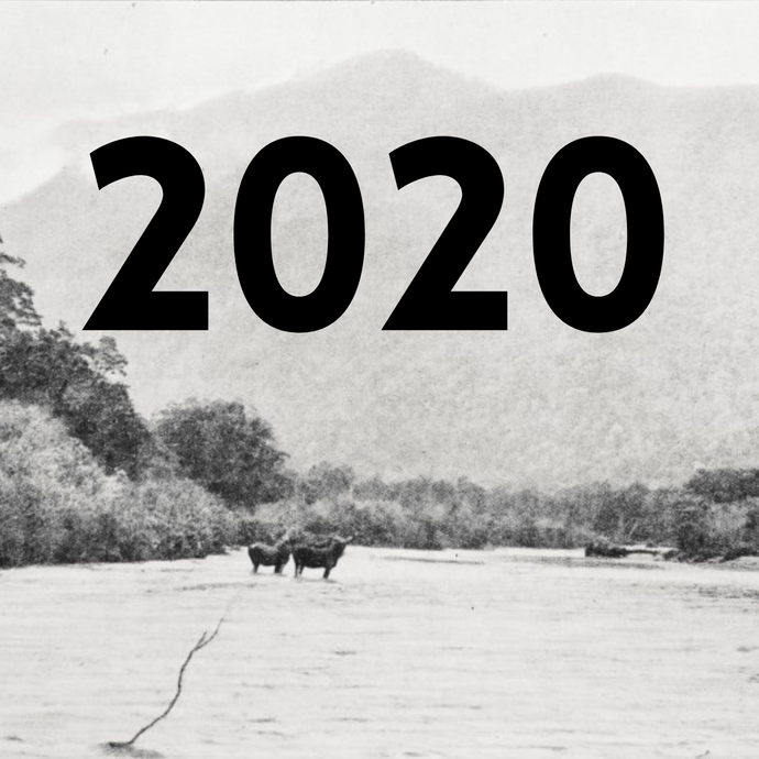 Thank you, 2020