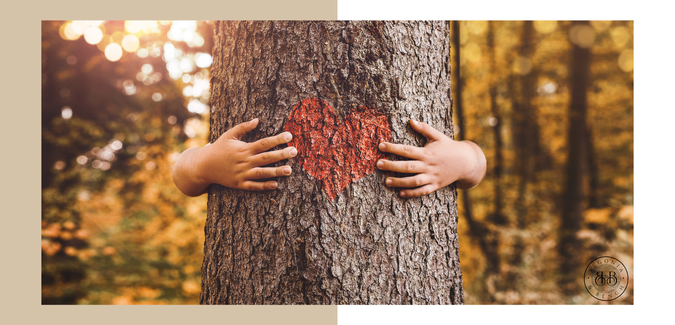 Child hands hugging an oak tree with a red heart in the middle.  Backdrop of a beautiful golden forrest.