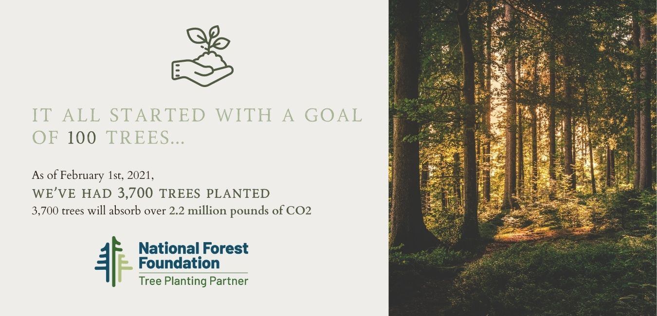 Forest of trees and national forest foundation small business partner infographic.