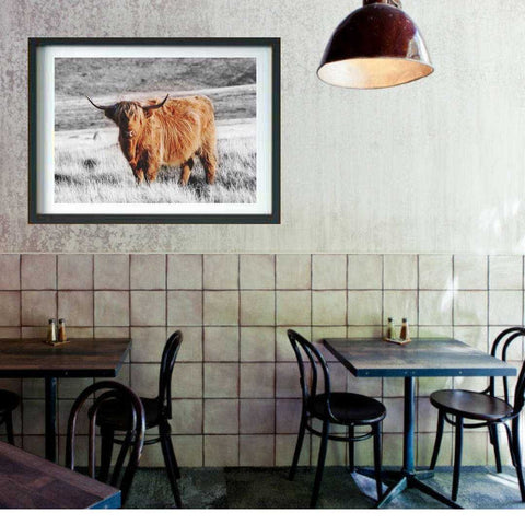 Highland Cow Wall art print, Buffalo Animal Print Home Decor
