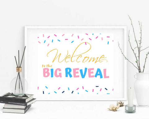 Gender Reveal Decorations welcome to the Big Reveal Sign personalized