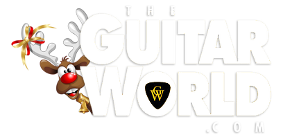 The Guitar World