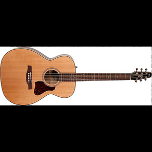 Seagull 045372 Coastline CH Momentum 6 String RH Acoustic Electric Guitar HG High Gloss