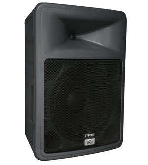 Peavey PR 15 Two-Way Speaker - The Guitar World