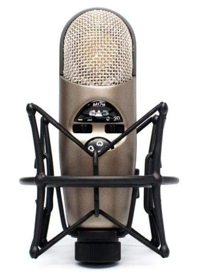 CAD Large Diaphragm Variable Polar Pattern Condenser Microphone M179 - The Guitar World