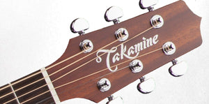 Takamine Pro Series 1 Dreadnought Body Acoustic Electric Guitar with Case in Natural Item ID P1DC