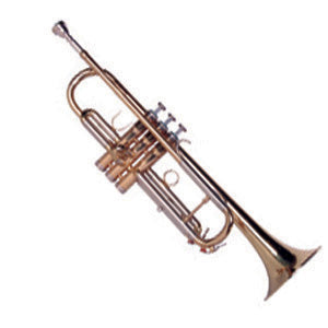 Sinclair Trumpet STR2500 - The Guitar World