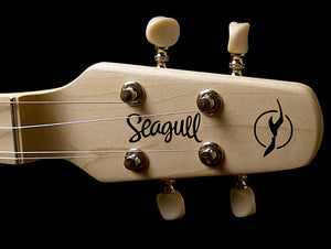 Seagull 042524 M4 Spruce 4 String Diatonic Acoustic Instrument - The Guitar World