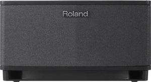 Roland CUBE Lite Guitar Amplifier - The Guitar World