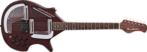 Danelectro Electric Sitar - Red - The Guitar World