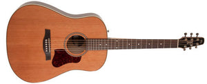 SEAGULL COASTLINE MOMENTUM HG ACOUSTIC ELECTRIC - The Guitar World