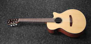 Ibanez AEG AEG50N-NT Acoustic Guitar in Natural High Gloss