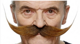 Tomfoolery Assorted Adhesive Moustache