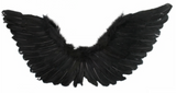 Tomfoolery Large Wings 90cm x 50cm